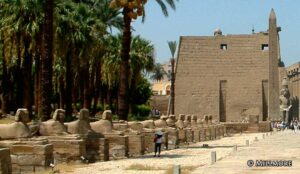 Luxor Temple Sphinxes